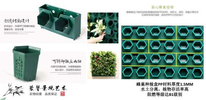 植物墙多少钱一平