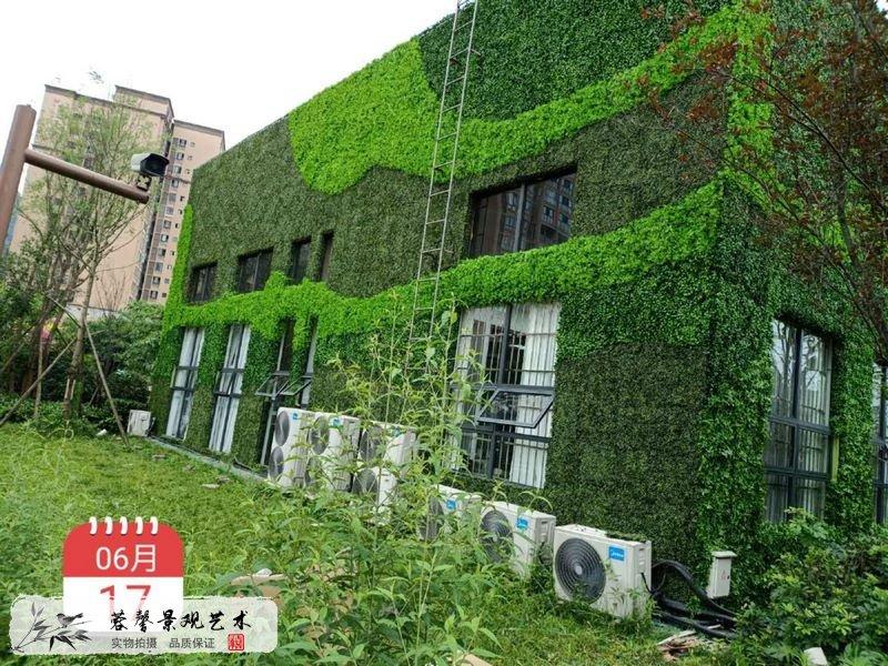 售楼部仿真植物墙